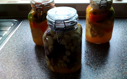 Lacto - Fermented Garlic/Red Onion & Cauliflower/Mixed Peppers